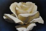 fiore-9